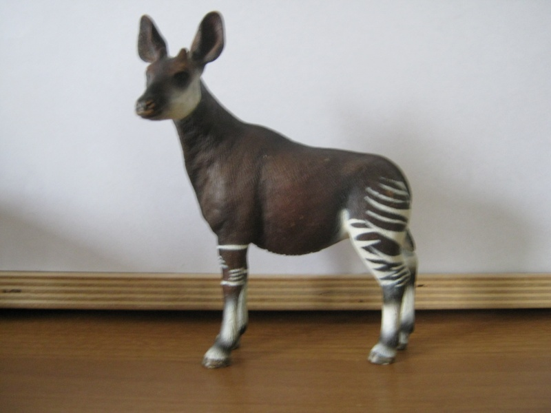 My new models of the last weeks - Page 3 Okapi11