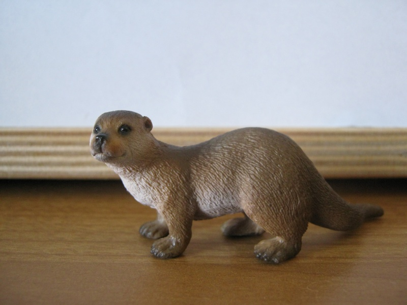My new models of the last weeks - Page 3 Otter10