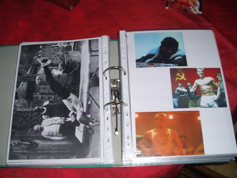 collection : ayor leo no saint Gedc4958
