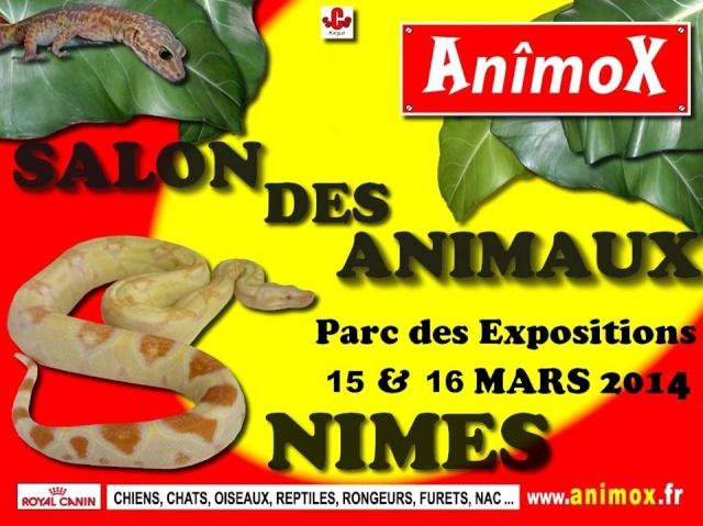 Salon des animaux de Nimes 15 & 16 mars 2014 16537310