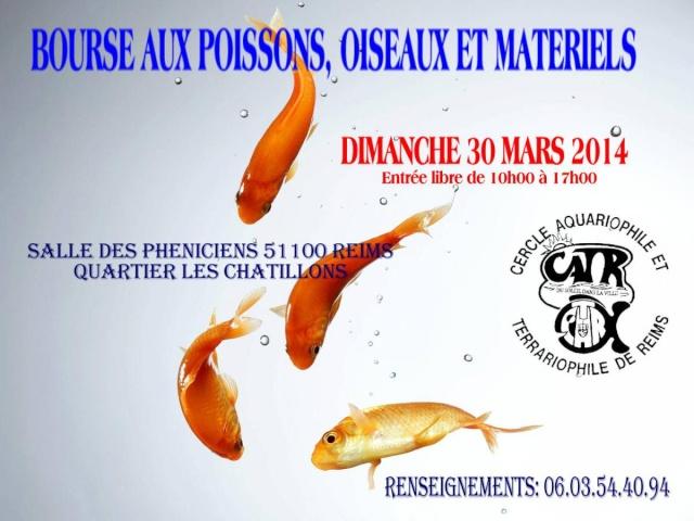 BOURSE aux POISSONS et OISEAUX LE 30 Mars 2014 - REIMS (51)  Affich12