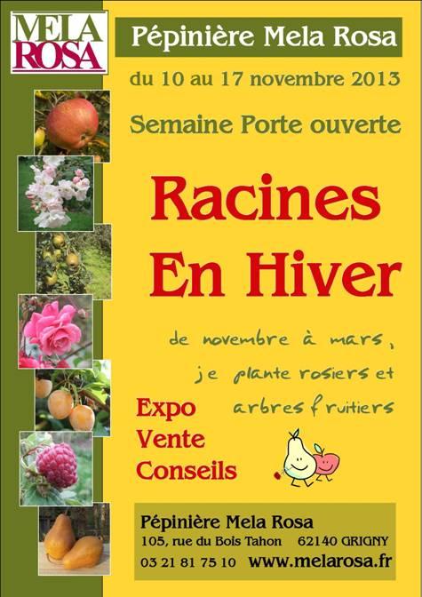 IDEES DE  VISITES DE PARCS ,  JARDINS  et FLORALIES Rose_m10