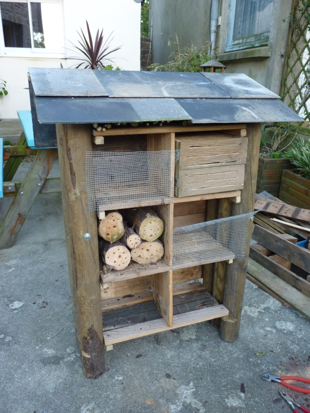 Un hôtel pour les insectes- cabane à insectes P1050713