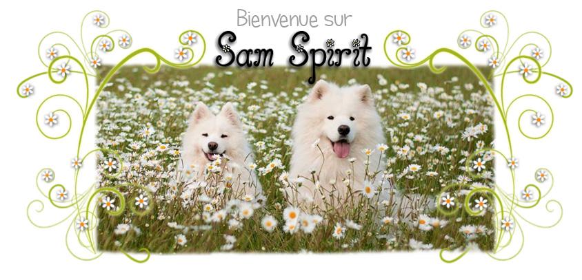 Sam Spirit