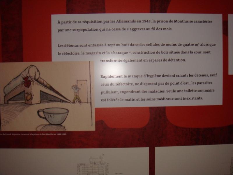 Maison du Dr Dugoujon Photo_13