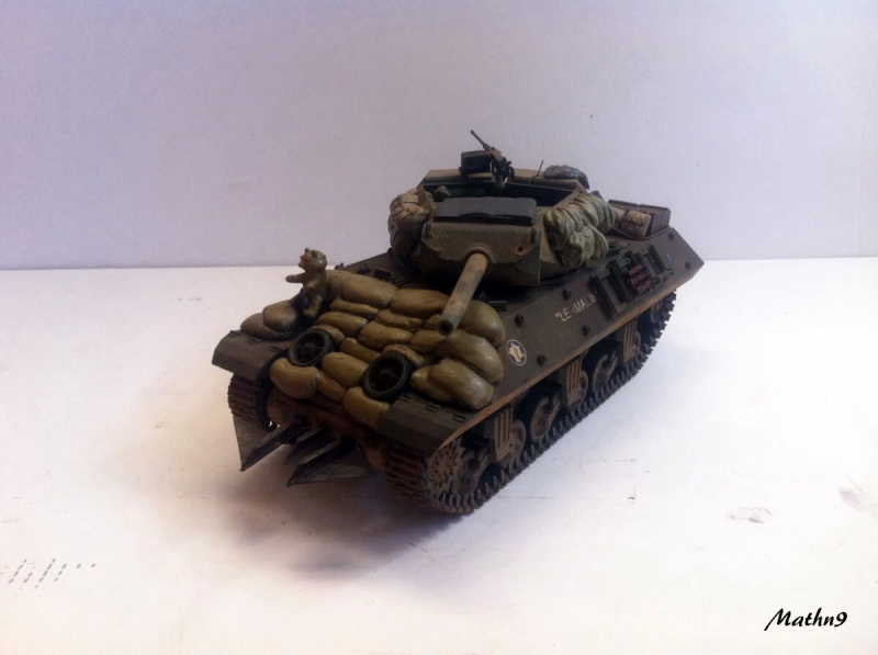 Tank Destroyer M10 [AFV Club 1/35] -Terminé- Img_0263
