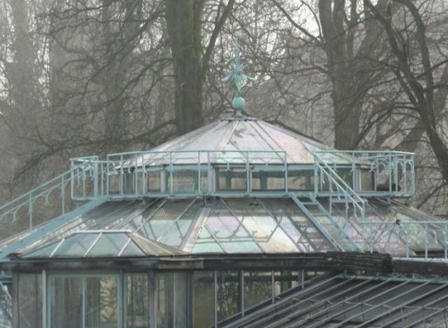 (Belgique) Serres du jardin botanique de Liège 65jhgj10