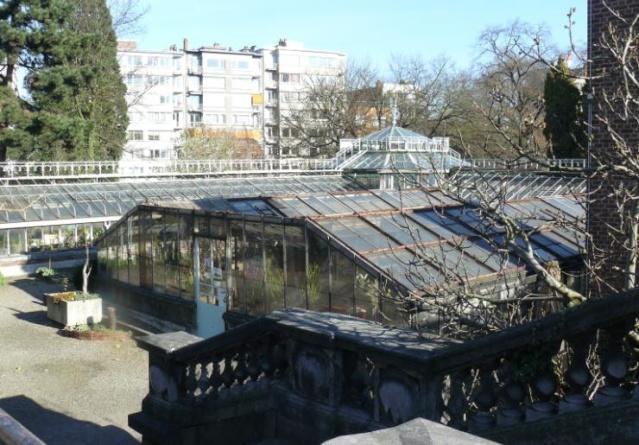 (Belgique) Serres du jardin botanique de Liège Khhjbk10