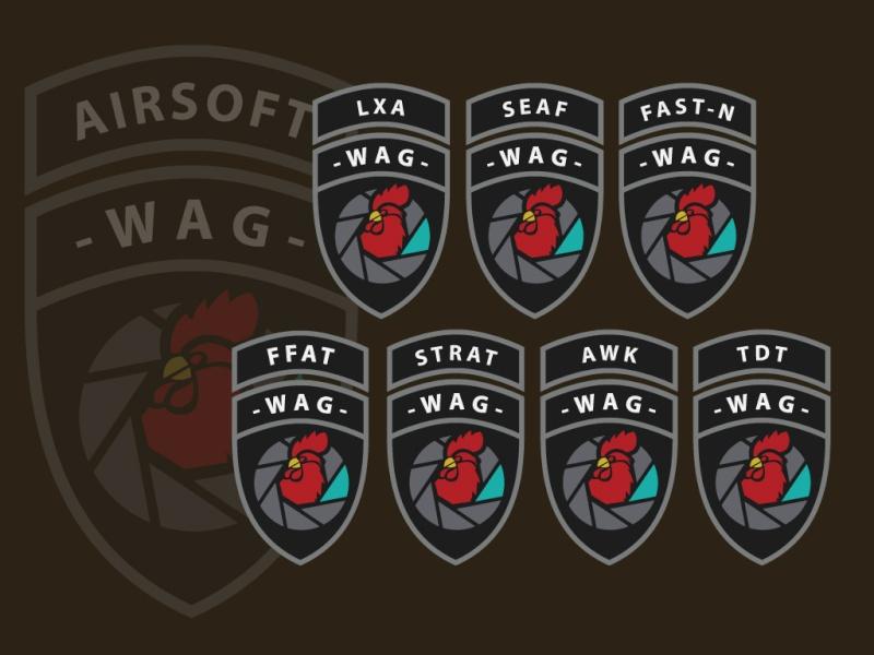 Le patch officiel WAG Wag-de10