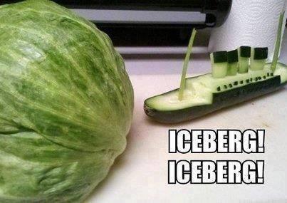 Petit iceberg deviendra grand 10262110