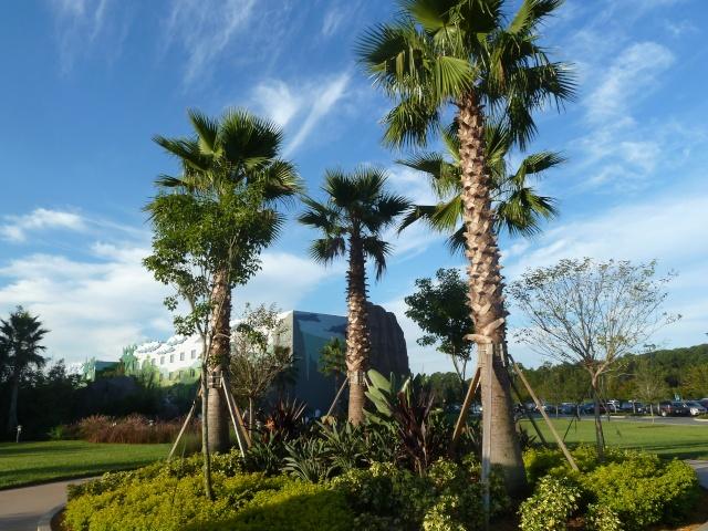 Les Disney Geek retournent en Floride pour une croisière et WDW [fini!] P1090624