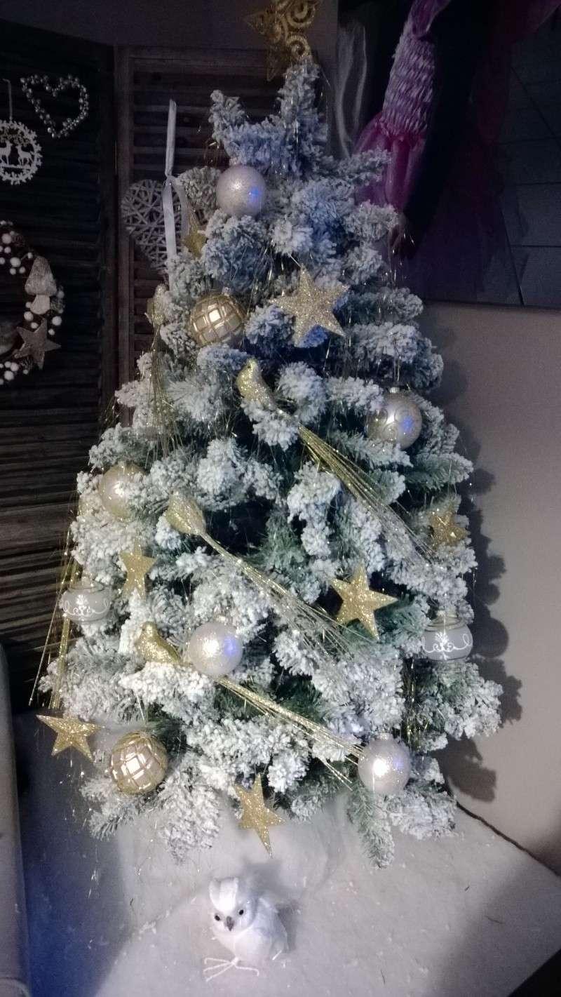 C'est bientôt Noël: montre moi ton sapin  !!  Wp_20134