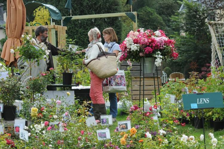 3 mai + 4 octobre 2013 Jardins d'Aywiers Dsc_8811