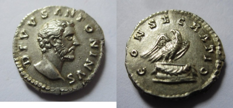 Les roy... romaines de Punkiti92 - Page 9 Consec10