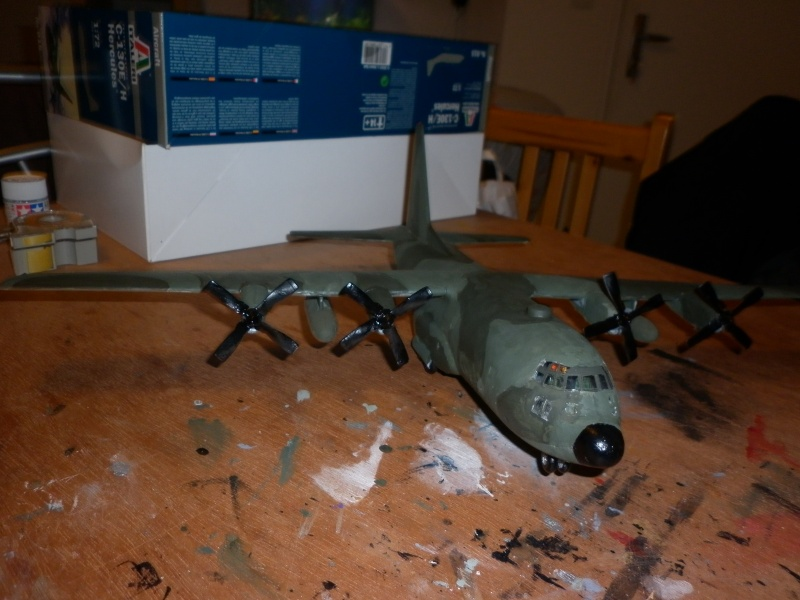 C-130E/H HERCULES DE CHEZ ITALERI AU 1/72  - Page 4 P1000781