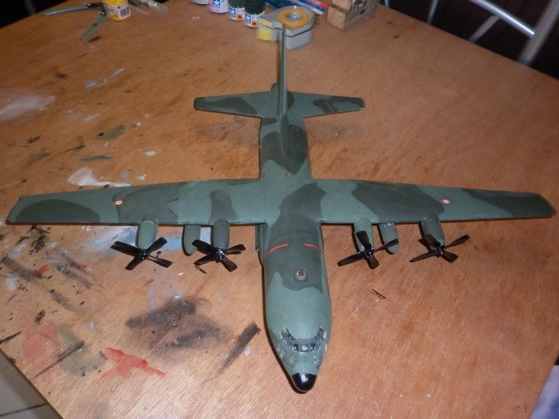 C-130E/H HERCULES DE CHEZ ITALERI AU 1/72  - Page 4 P1000782