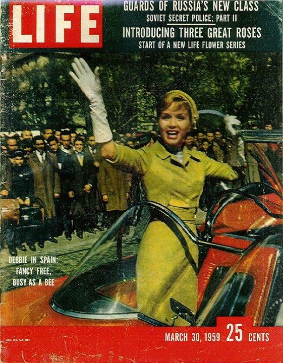 Lincoln Futura 1955 10338310