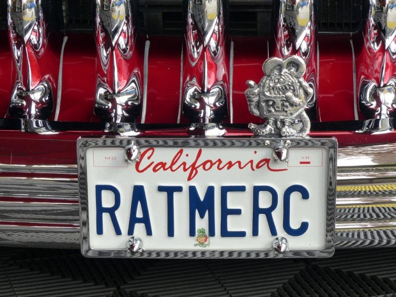 1951 Mercury - Ratmerc -  12182210