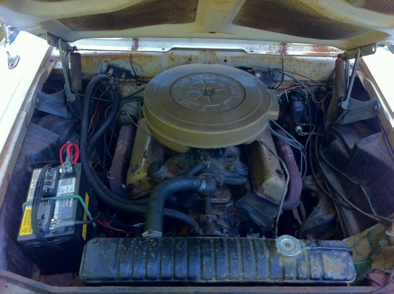 Edsel custom & mild custom Photo-14