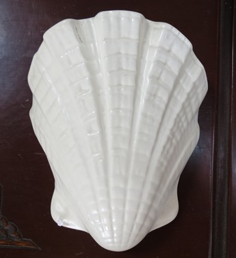 Shell - Nice shell vase for gallery  X_cl_s19