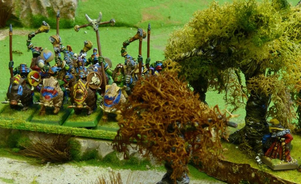 Warhammer Fantasy, Galerie de Batailles - Page 4 P1010437