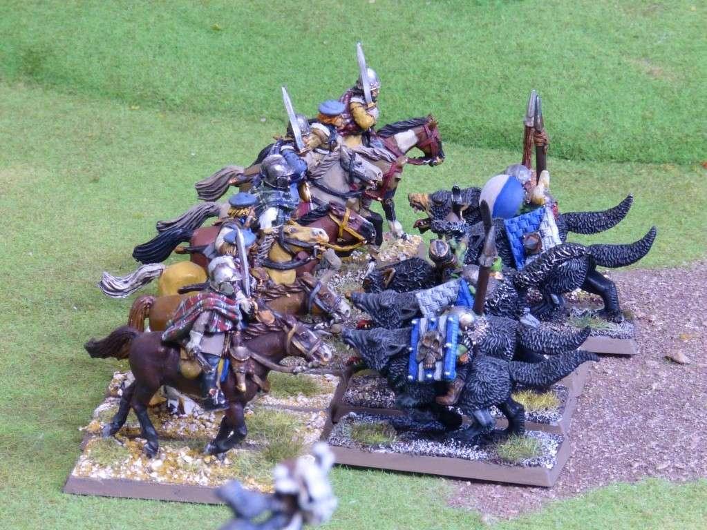 Warhammer Fantasy, Galerie de Batailles - Page 4 P1010439