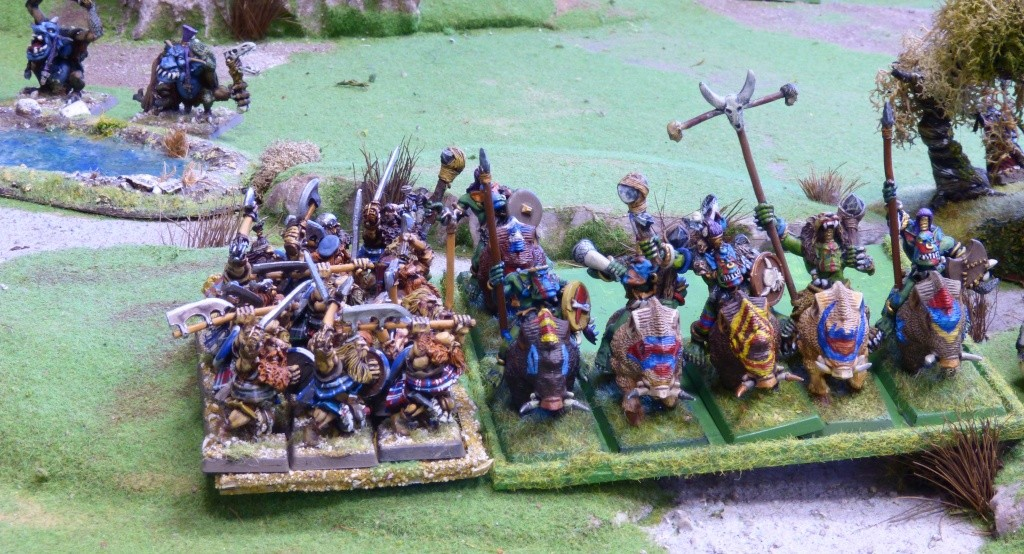Warhammer Fantasy, Galerie de Batailles - Page 4 P1010440