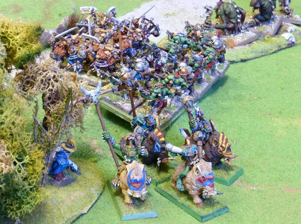 Warhammer Fantasy, Galerie de Batailles - Page 4 P1010442