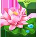 Temps de pousse des différentes Graines [parcelle, serre, avec ou sans arroseurs] Fleur_11