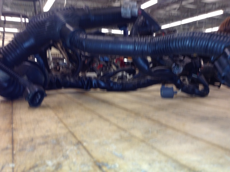 Old And slightly New (used) Engine Harness/loom 2013-142
