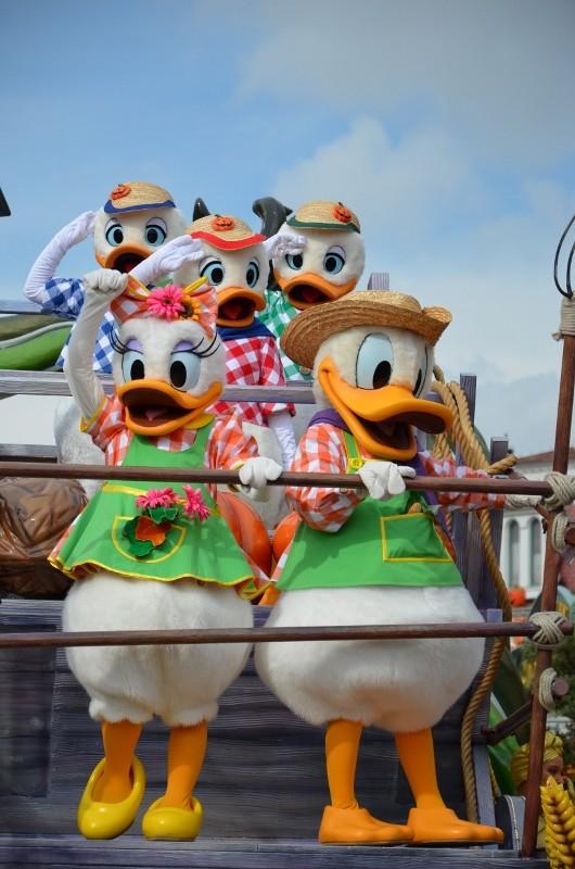 La Célébration Halloween de Mickey (2013) Dsc_0010