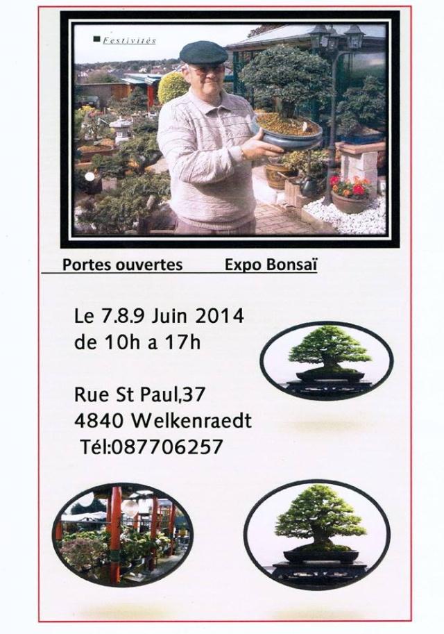 Bonsaï - Page 2 Expo_b10