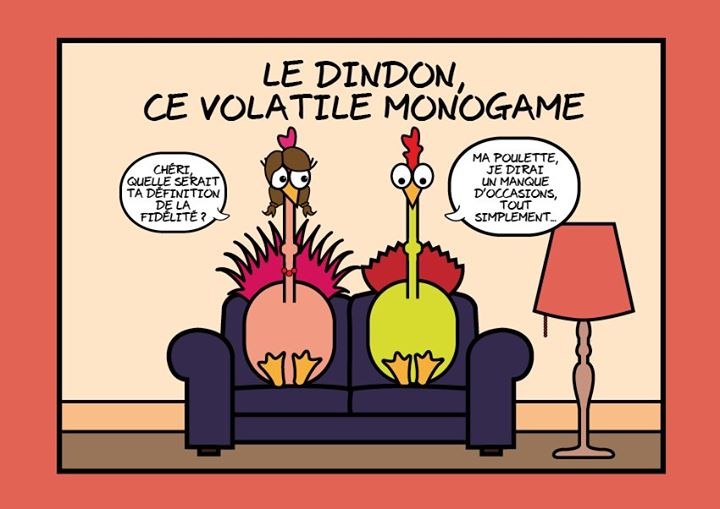 Blagues du jour - Page 3 Blague12