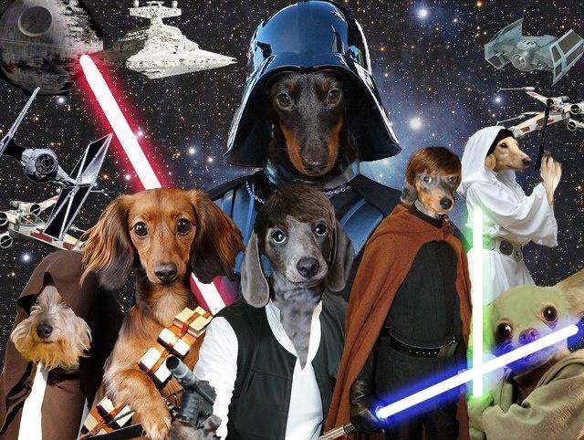 WEEKEND VIDEO: Star Wars Dogs 652d6510