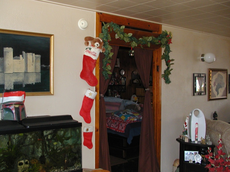 Your Christmas pics from around the globe House_11
