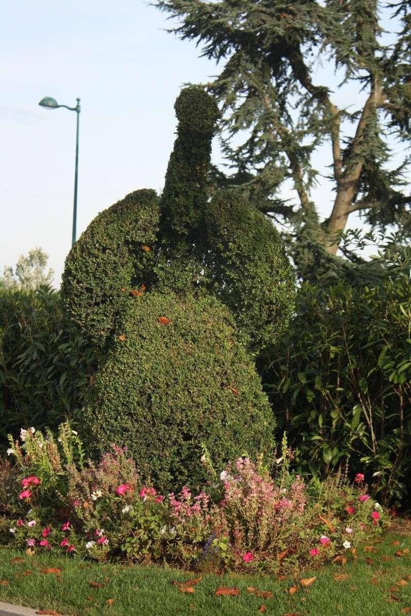 Séjour merveilleux au Disneyland Hôtel  Img_3911