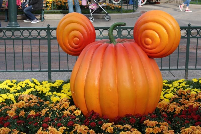 Séjour merveilleux au Disneyland Hôtel  Img_3921