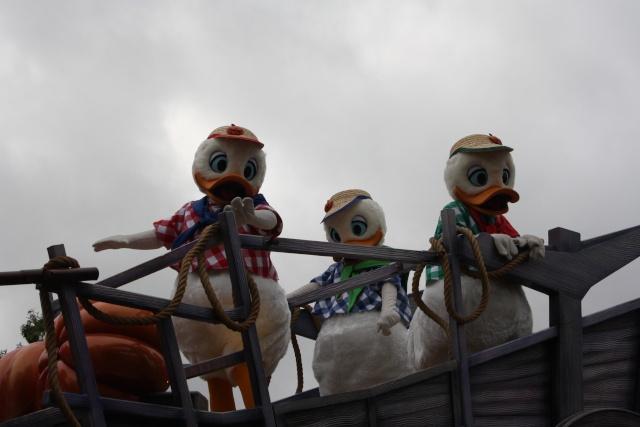 Séjour merveilleux au Disneyland Hôtel  - Page 5 Img_5615