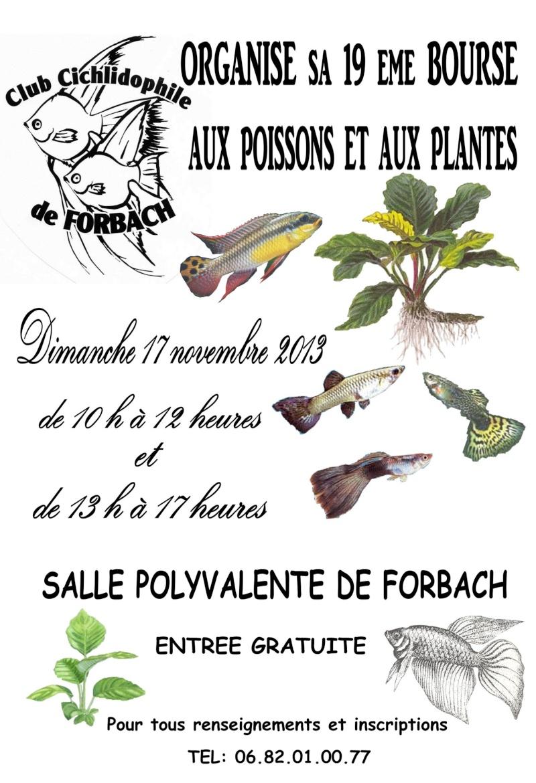Bourse de Forbach le 17 novembre 2013 Affich14