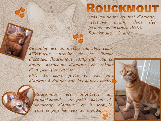 Rouckmout FIV+ - Page 2 Rouckm11