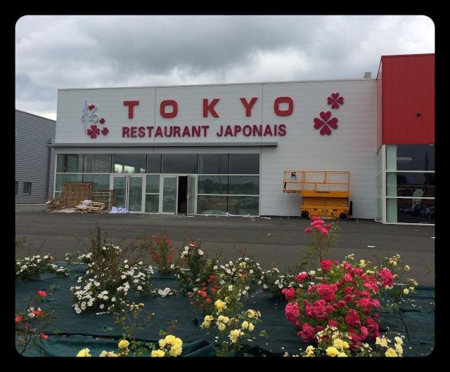 Restaurant Japonais Tokyo au Pian Medoc  Image45