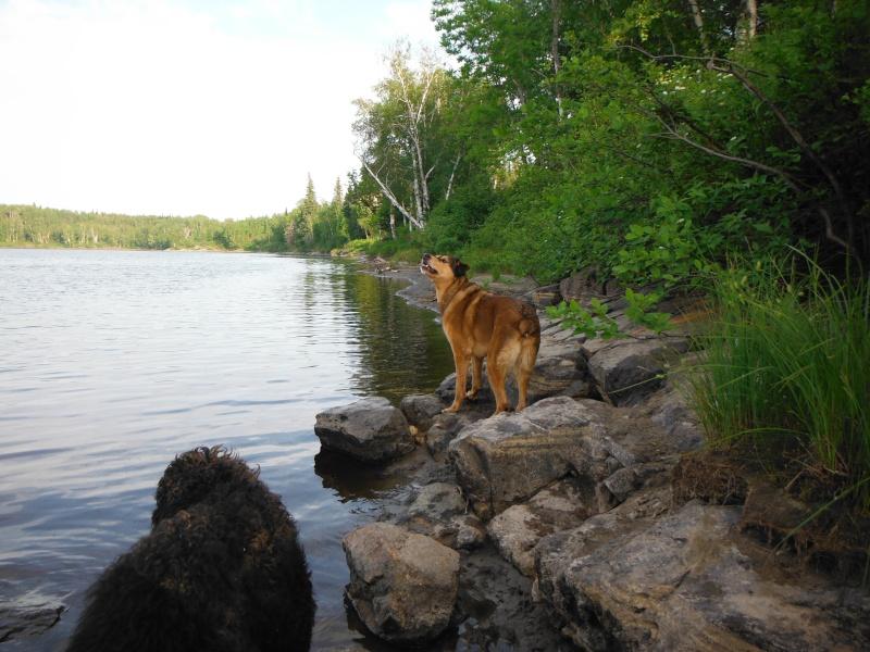 Lac st-jean Dscf0711