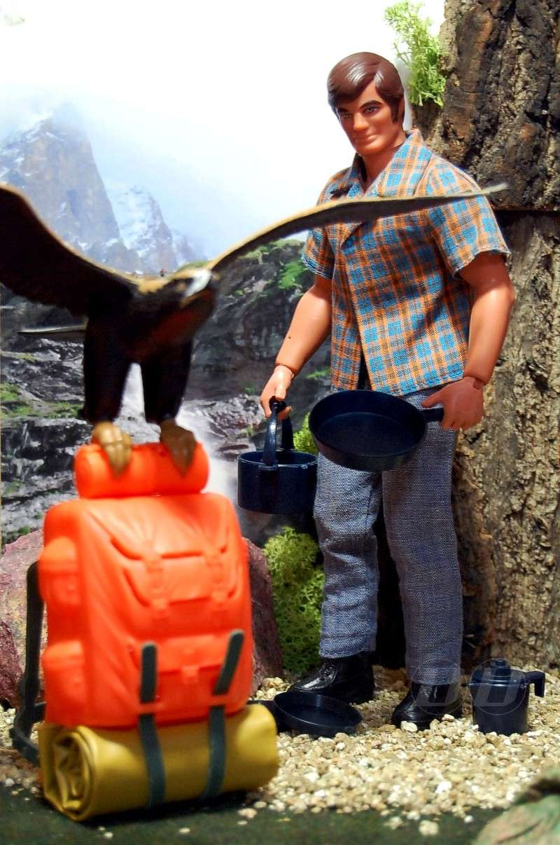 THE EAGLE OF THE DANGER PEAK / CIMA PERICOLOSA No. 7366 Eagle-10