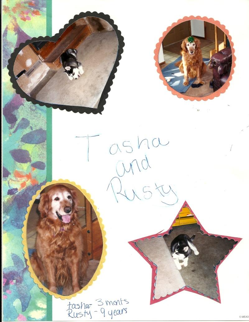 Tasha - I miss you! 10/28/97-10/30/13 - Page 2 Tasha110
