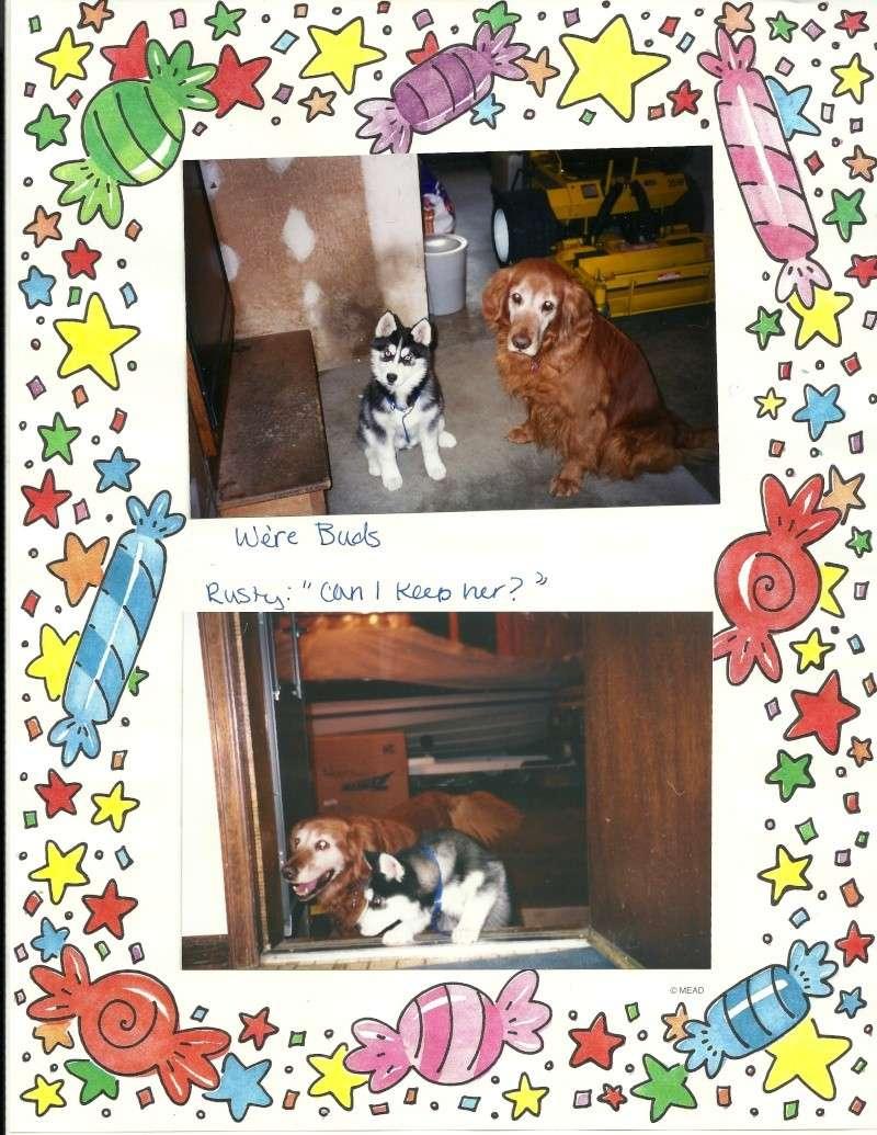Tasha - I miss you! 10/28/97-10/30/13 - Page 2 Tasha210