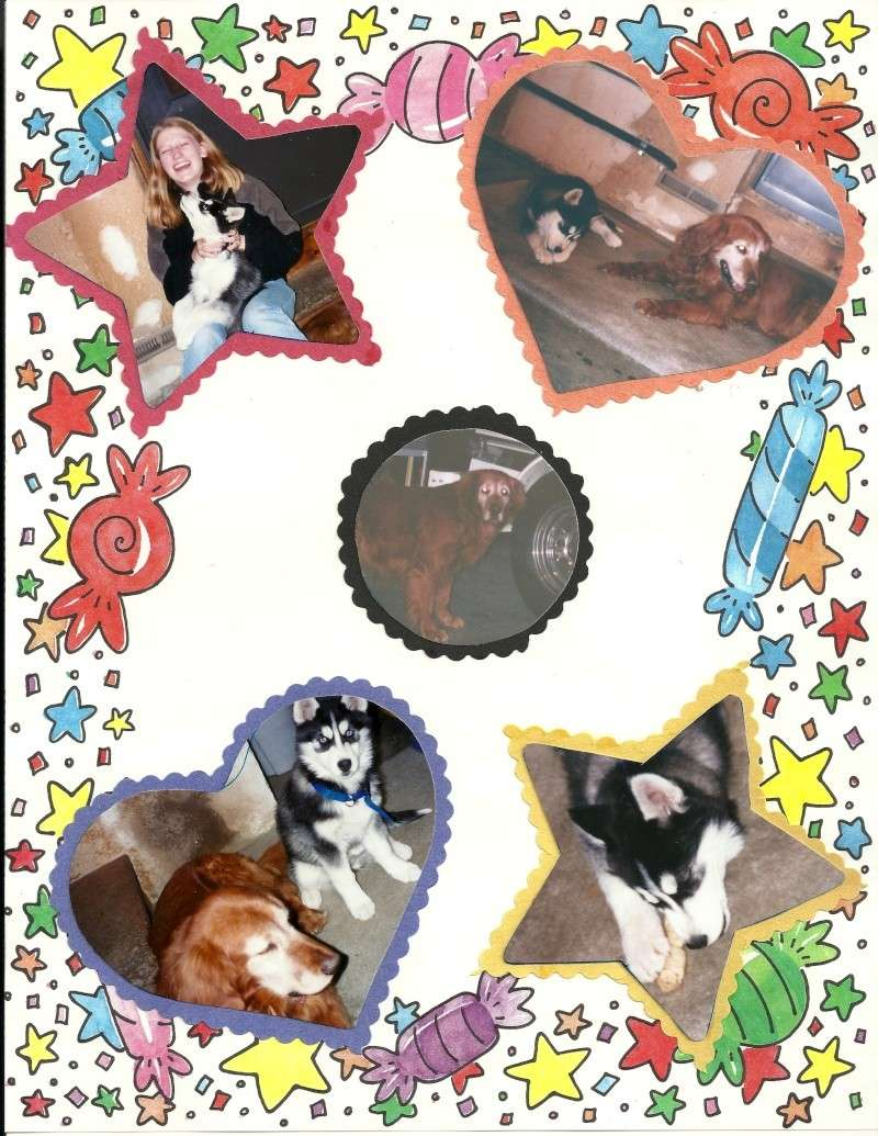 Tasha - I miss you! 10/28/97-10/30/13 - Page 2 Tasha310