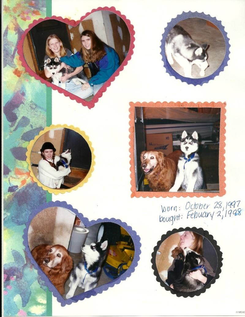 Tasha - I miss you! 10/28/97-10/30/13 - Page 2 Tasha410