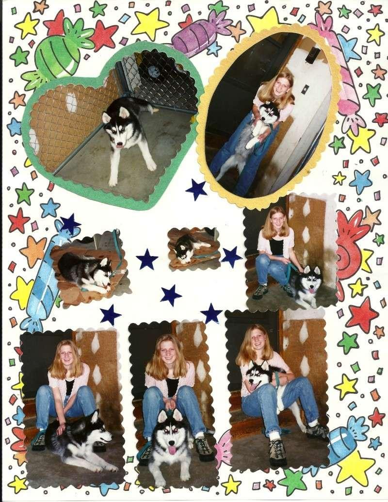 Tasha - I miss you! 10/28/97-10/30/13 - Page 2 Tasha710