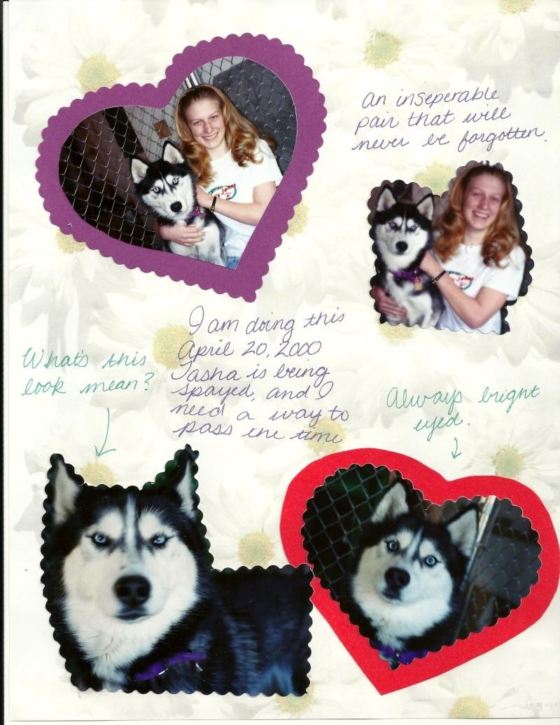 Tasha - I miss you! 10/28/97-10/30/13 - Page 2 Tasha910