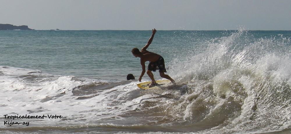 Photo Tropicale... Img_7612